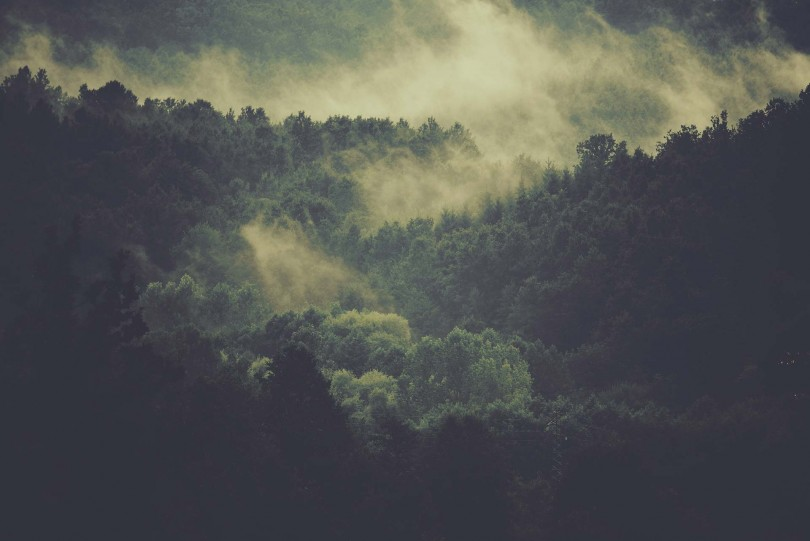 Kickstarter <strong><em>sustainable</em></strong> narwhal